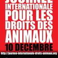 Journée Internationale des Droits des Animaux - <b>10</b> <b>décembre</b> 2009