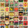 Des étiquettes vintage