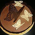 Comment faire des papillons volants en chocolat