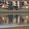Vx Boucau Lac 2910156