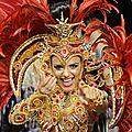 Brésil : la fièvre jaune avance au pays du carnaval
