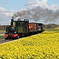 Train MV Fête de la vapeur 2016
