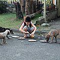 Mon chien, moi, les autres et le reste