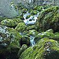 Autour de la Souloise : Les Gillardes et le Canyon de l'Infernet de Pellafol 38970