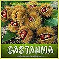 CASTANHA / les chatâignes et les <b>marrons</b>