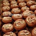 Macarons_de_Midori_1_