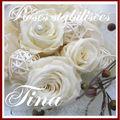 bouquet de mariée roses stabilisées TINA