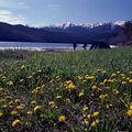 <b>Parc</b> <b>national</b> Zabaïkalski, lac Baïkal