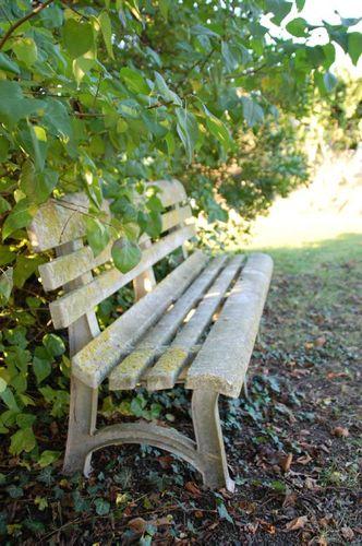 01-11-11 Le banc abandonné