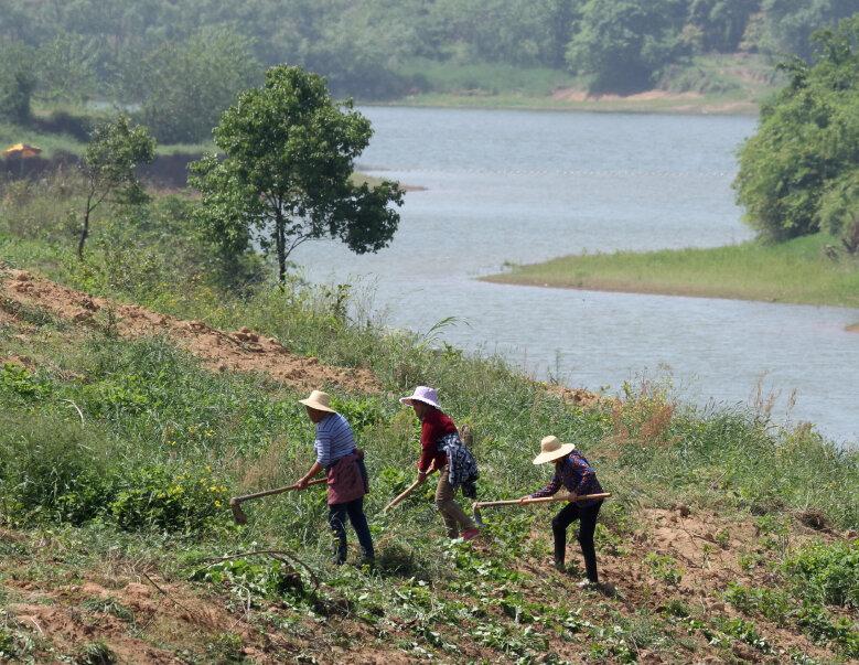Agriculteurs_Maoli Lake_Henan_XRu_4