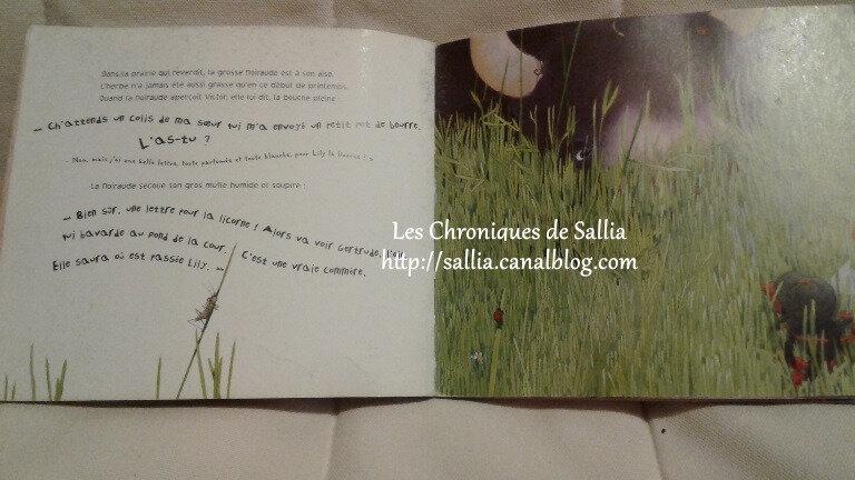 une lettre pour lily 5