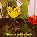 Printemps # fleurs en boites d'oeufs #