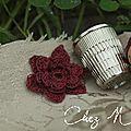 fleur_motifs crochet irlandais_2