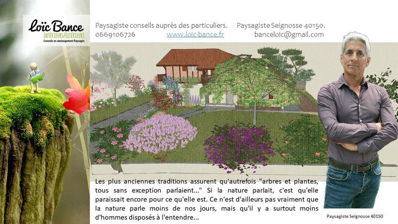 Paysagiste-seignosse-extension-maison-individuelle-et-aménagement-paysager-seignosse-12