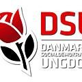 Danemark : quel <b>socialisme</b> ?