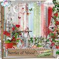 Berries of woods ptitesouris