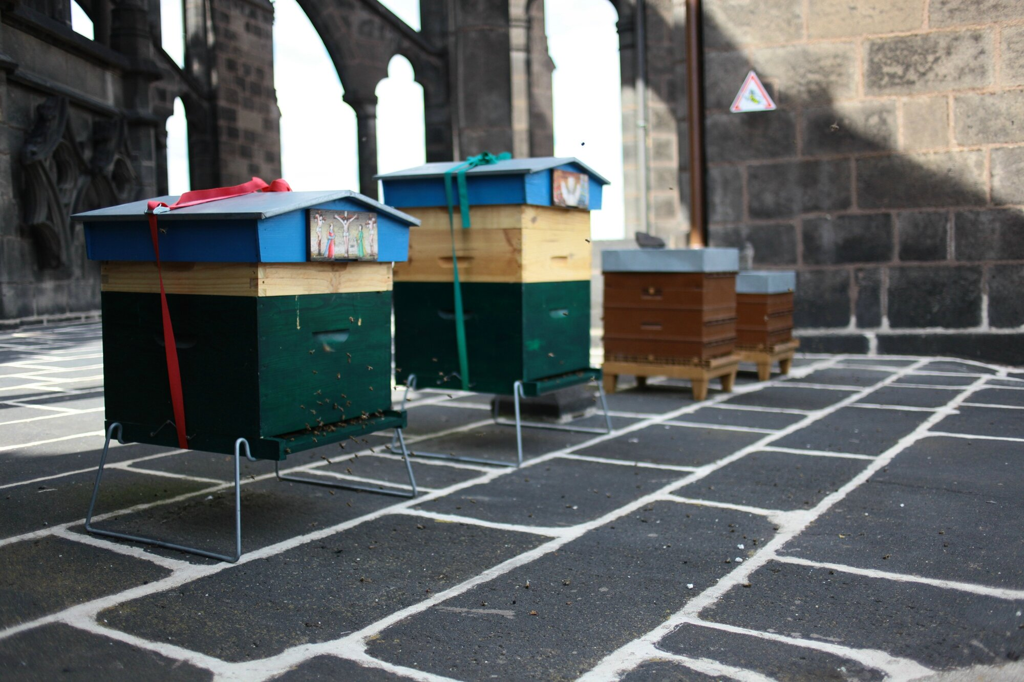 ruches_cathedrale_300614_04