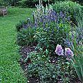 Le jardin en août