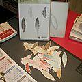 Cartes aux plumes