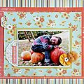 (pumpkins) 1