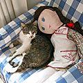 - mon chat a trouve un coin au frais -