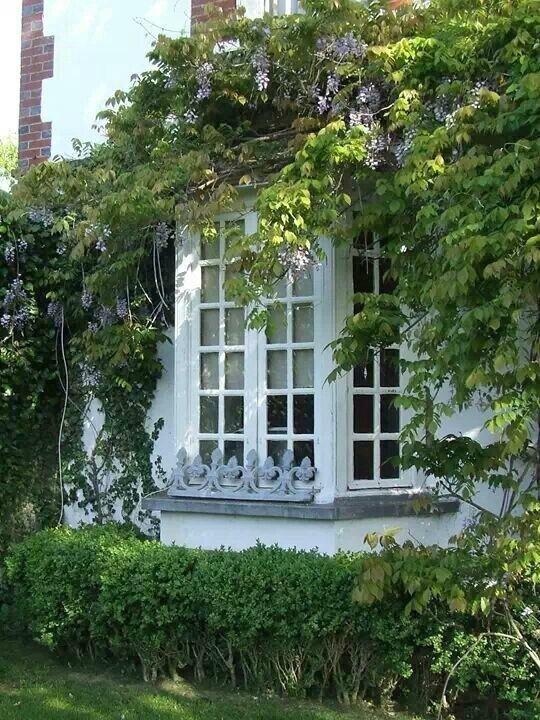 The Bow-Windows - Le Cottage De Gwladys