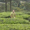 Cameron Highlands, Boh Tea Plantation, rencontre lors de ma montee en stop