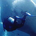 Un safari de plongée sur épave à l' est de bali