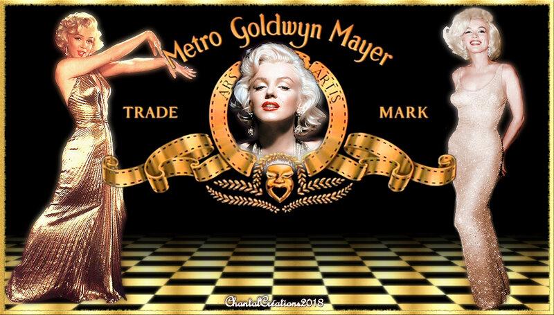 Fonds Marilyn Monroe 2018 (9)