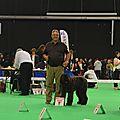 Joyce de la Dullague meilleur jeune à l'expo canine de DOUAI