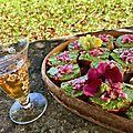 Toast pain maïs avec pesto fanes de radis, brunoise de betterave chioggia, fleurs de mufliers