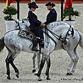 Ecole royale andalouse d'art equestre