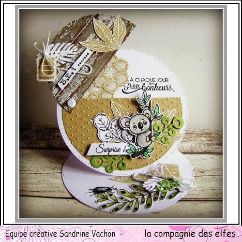 Sandrine VACHON Carte du 7 mai dt LCDE (2)