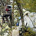 474932_un-militant-oppose-au-projet-d-aeroport-a-notre-dame-des-landes-installe-dans-un-arbre-a-cote-de-sa-cabane-lors-d-une-operation-d-evacuation-par-la-police-le-30-octobre-2012