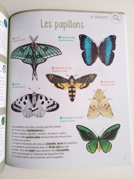 cahier-nature-rde-114