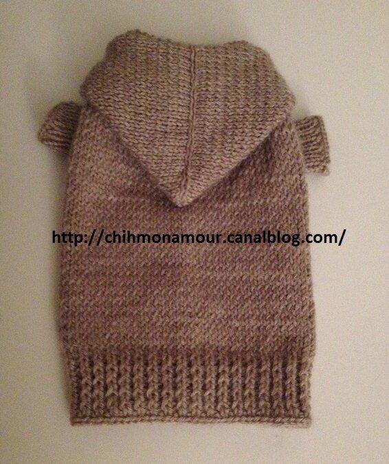 tricoter un pull pour chien