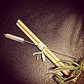 La paille en Bambou