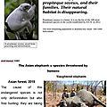 Les Unes : Les animaux en voie de <b>disparition</b>... en anglais !
