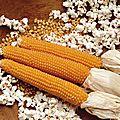 Pop-corn maison