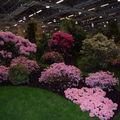Floralies 070