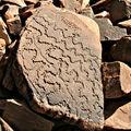 L'<b>art</b> rupestre