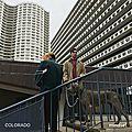 Playlist # février 2017