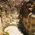 Le Wadi Mujib
