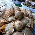 Fruits de mer a Nha Trang