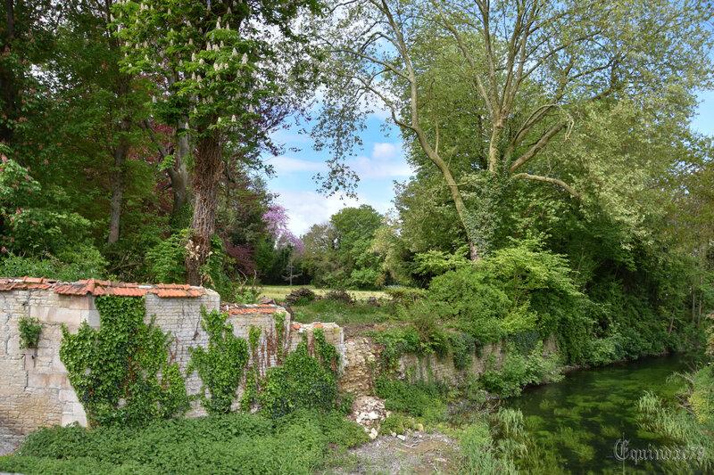 la cour d'Othon ou d'Eudes château de Mauzé sur le Mignon (2)
