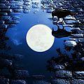 Méditation de la lune bleue