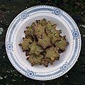 Biscuits au thé matcha et aux canneberges