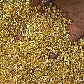 Buying gold in Dubai