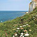 Normandie secrete.