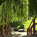 Prairie des filtres et jardin japonais.
